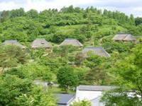 sinryoku-no-soyumura1